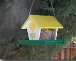 How to Build a Bird Feeder