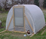 Greenhouse made from 2x4s and cattle panel