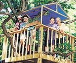 Build the Ultimate Tree House